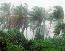 Cyclone-Tonga